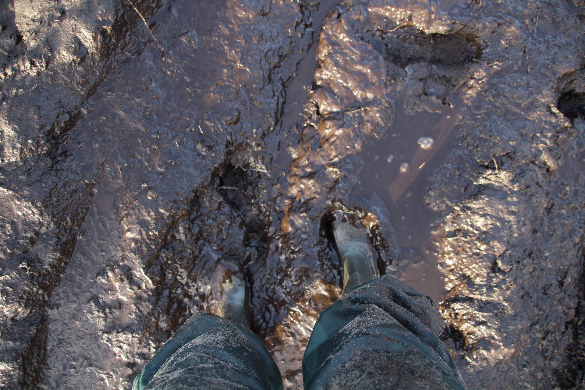 Person står i mudderpøl