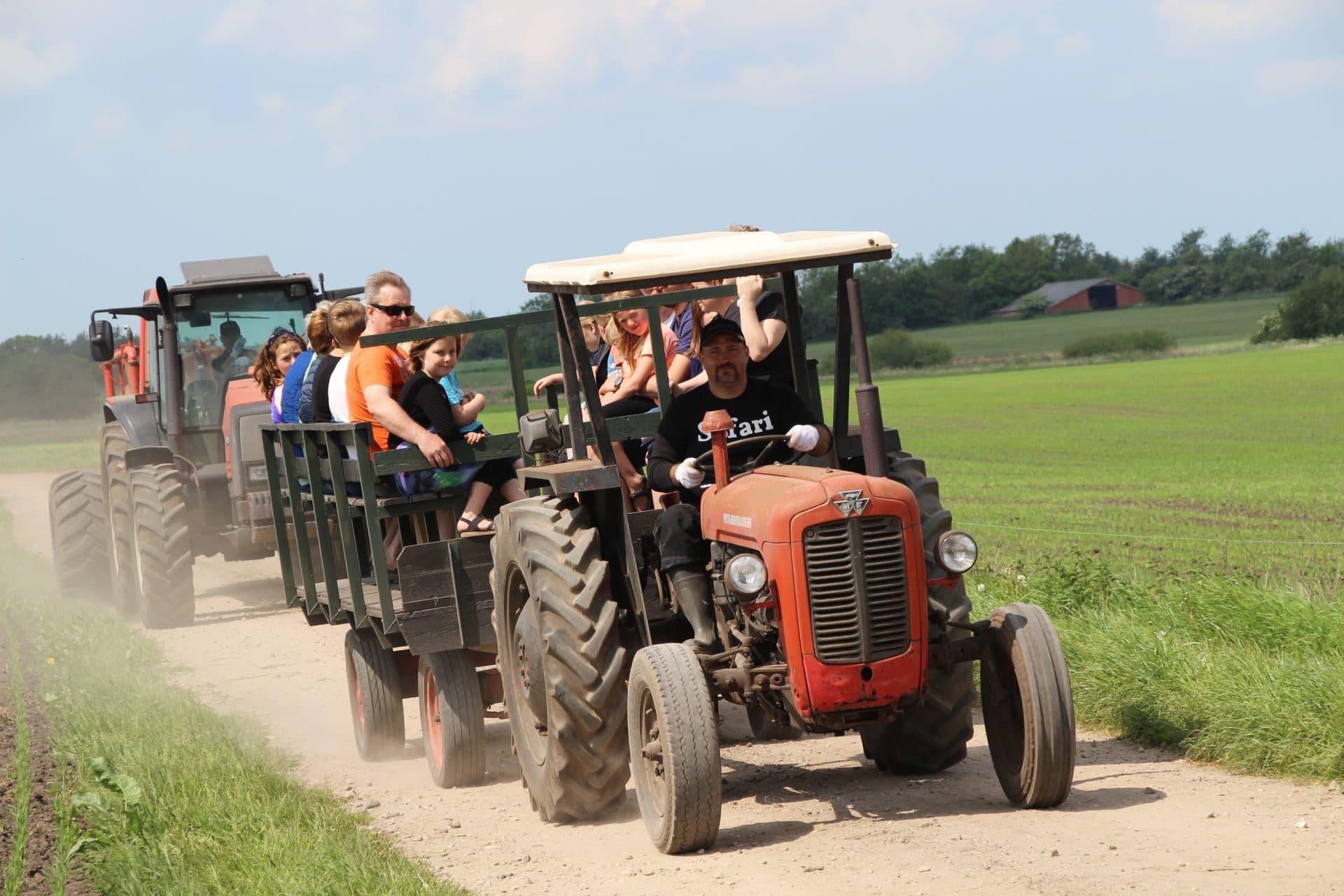 Besøgene til Sofari kører med traktorerne