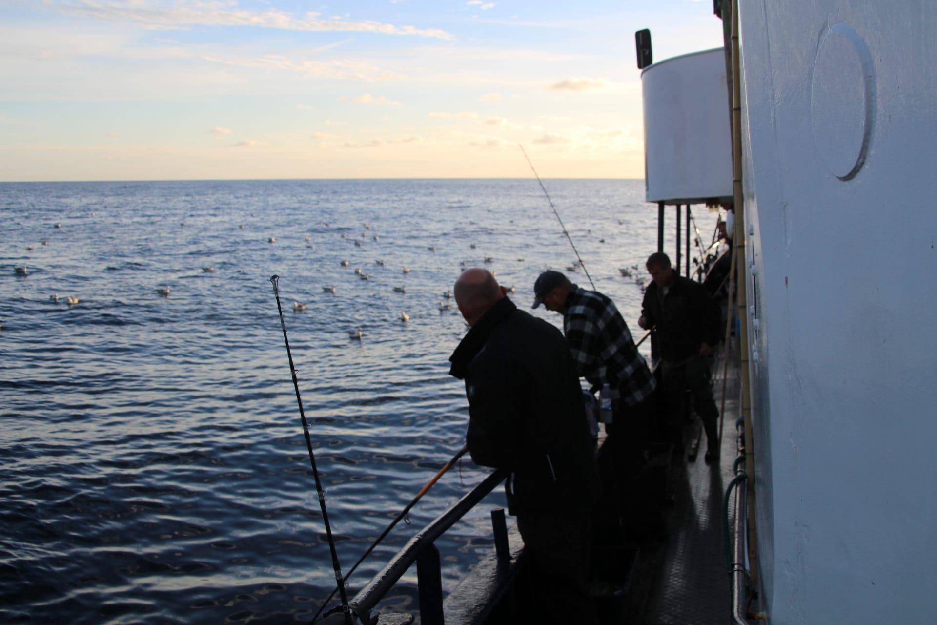Teambuilding fisketur