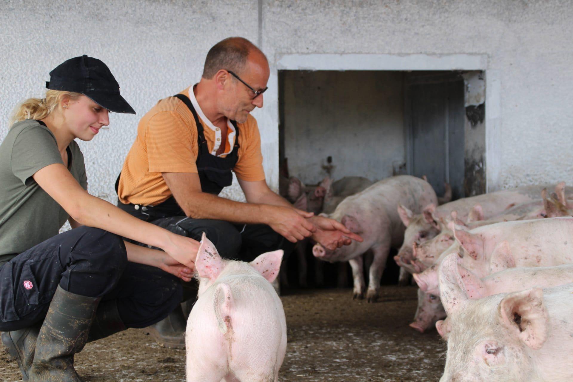 Økologisk dyrlæge Niels Peter Baadsgaard