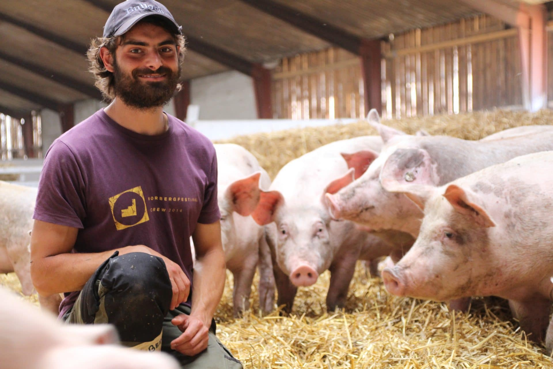 Adam Veng antropolog øko grise